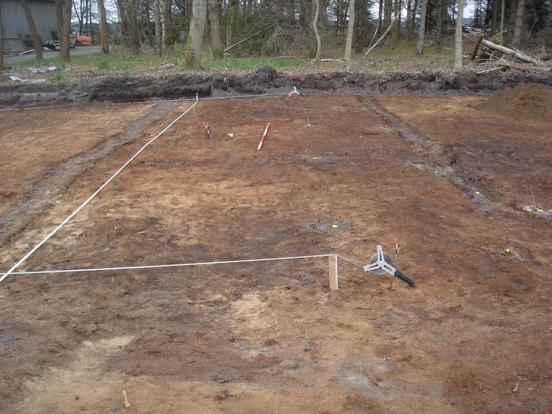 Geländeplanum mit markierten Standspuren der Pfähle des doppelten Lagerzauns und Fundamentresten einer Unterkunftsbaracke. Foto: A. Ehresmann, 19.4.2008