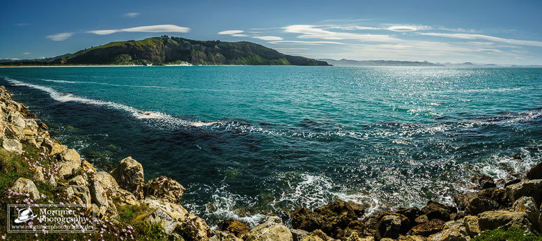 Coastline with springflowers and wonderful green and blue water