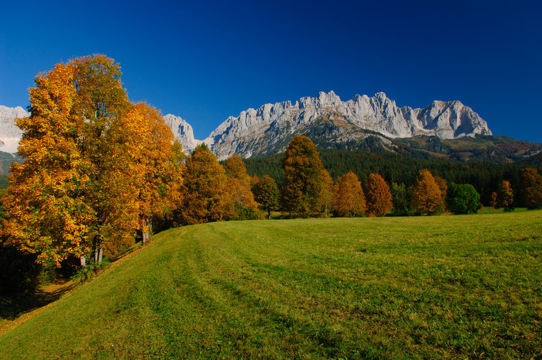 Colorful forests in autumn; Hiking season in Tyrol