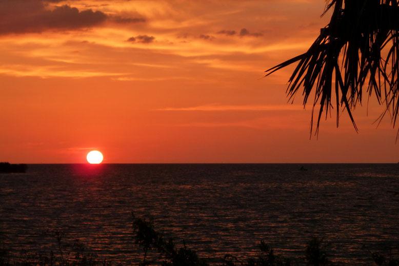 Immer noch Fort Island Beach, FL in der Nähe von Crystal River