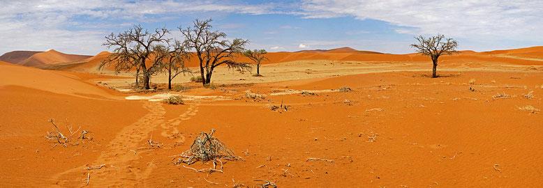 NAMIBIE : Sesriem, Hidden Vlei