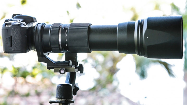 the Tamzooka (The Tamron 150-600mm) is a cheap third party lens but a good lens