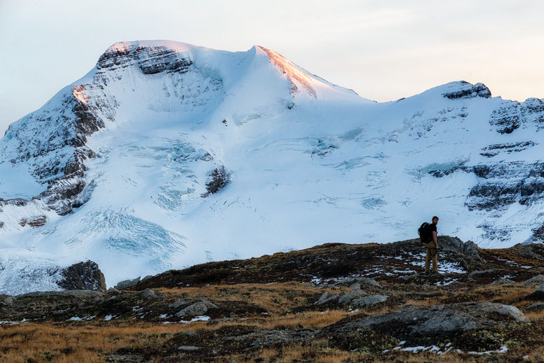 Wilcox Pass. Best hikes in Jasper National Park