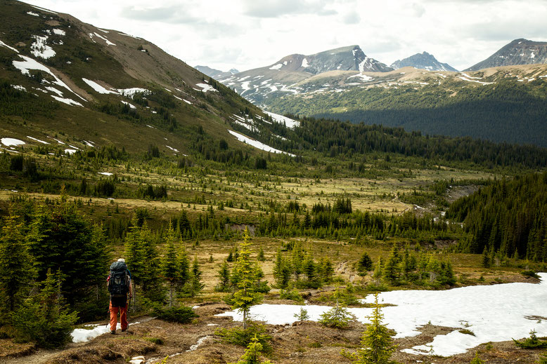 After the Little Shovel Pass - A backpacking trip on the Skyline Trail in Jasper National Park