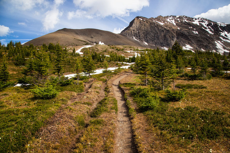 A hiking guide to the Skyline Trail in Jasper National Park