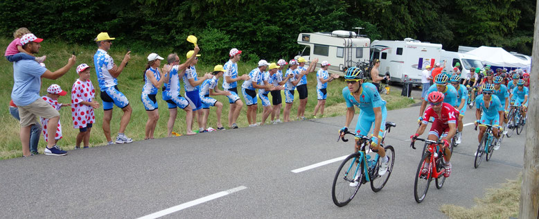 Dynamo Bortshausen Tour de France
