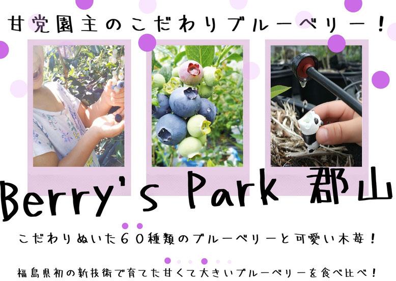 ブルーベリー栽培で福島県では初めて養液栽培を本格導入しました。郡山ベリーベリー園です。