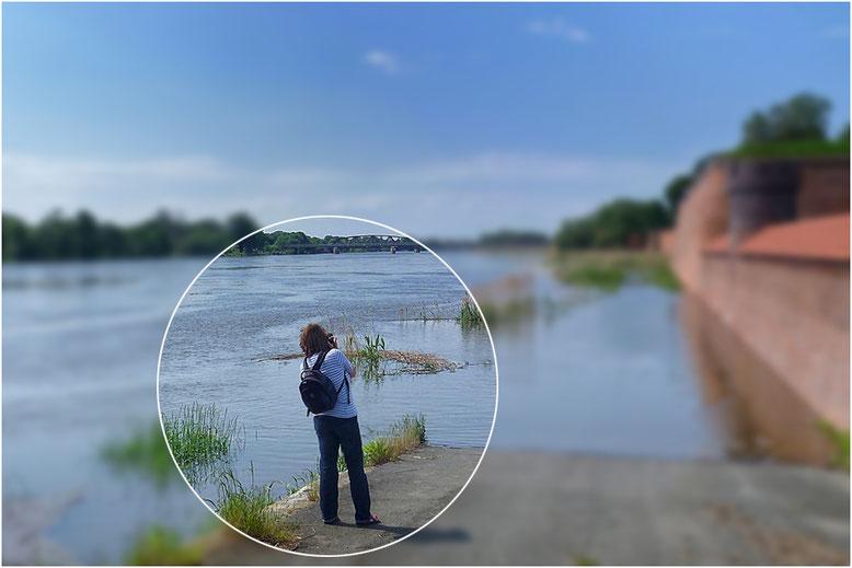 ... auf Motivsuche an der Oder (Kostrzyn)