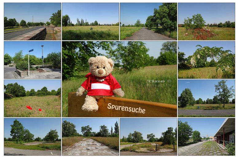 Collage Schwedt/Oder WK VII