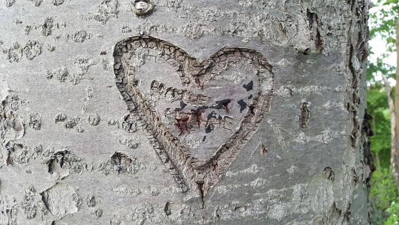 Ehe in der Krise Partnerschaftskonflikt Konflikte in der Paarbeziehung Hilfe durch Eheberatung Paartherapie Anna Oswald