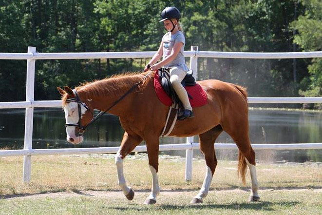The fun place for children and horses - Pony Gang Farm in Camden South Carolina -