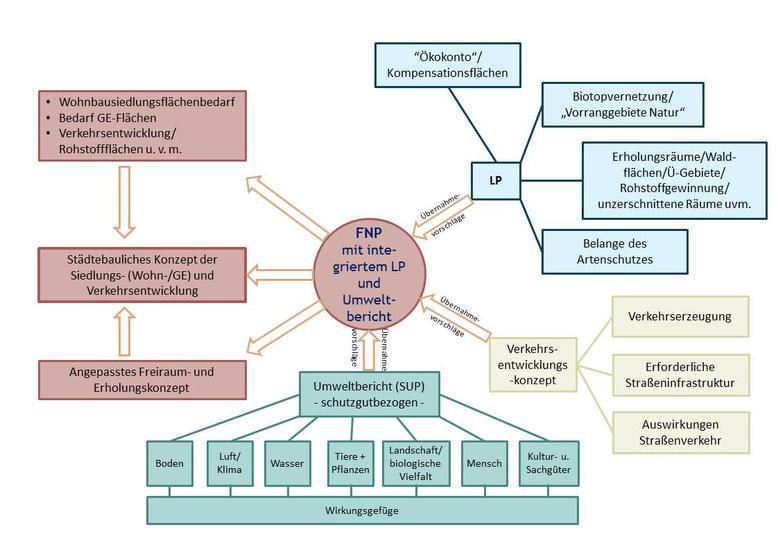 Aufgaben von Flächennutzungs-, Landschafts-, Verkehrsentwicklungsplan und Umweltbericht(Quelle: Kling Consult)