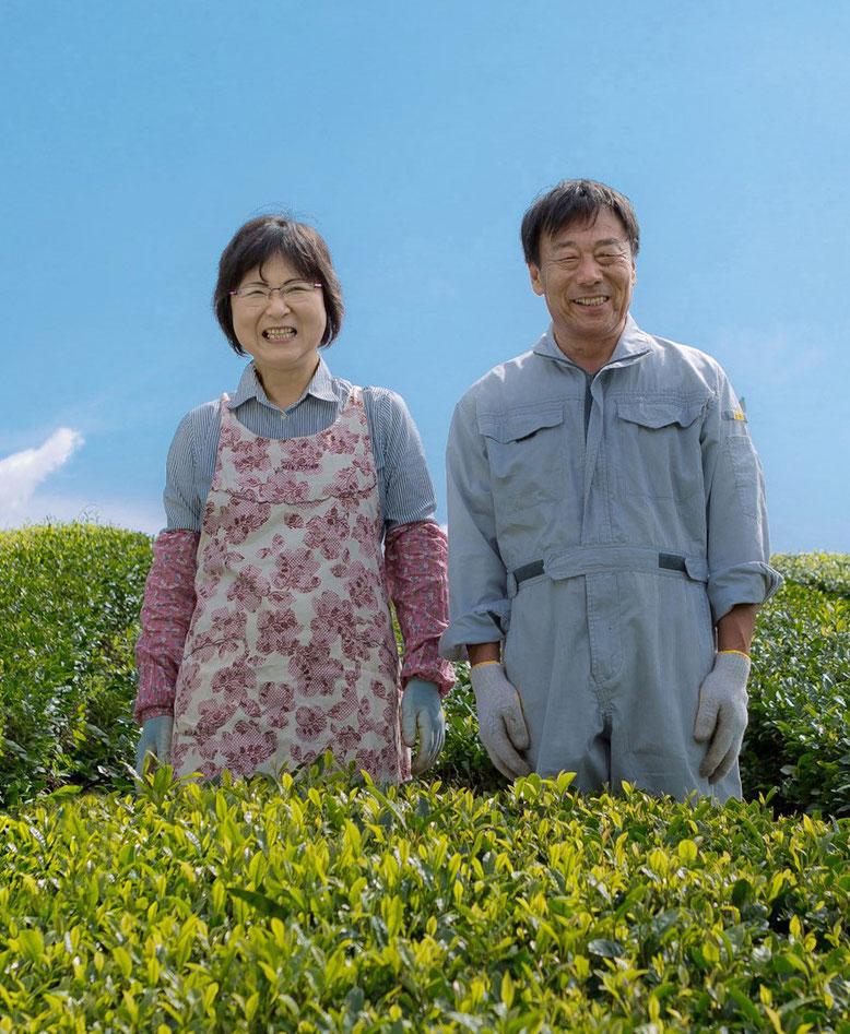 有機肥料・減農薬の緑茶・粉末茶を使ったOEM・PB商品、オリジナル商品ならお任せ!美濃上石津の茶園、平塚香貴園