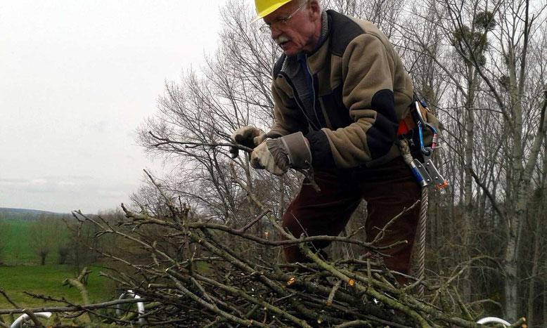 Peter Loskarn bei der Errichtung der Nesthilfe auf dem Mast in luftiger Höhe. Mittlerweile betreut er 40 Storchennester im Altkreis Haldensleben.