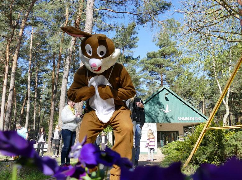Ist er nicht wundervoll, der Osterhase vom Campingplatz?