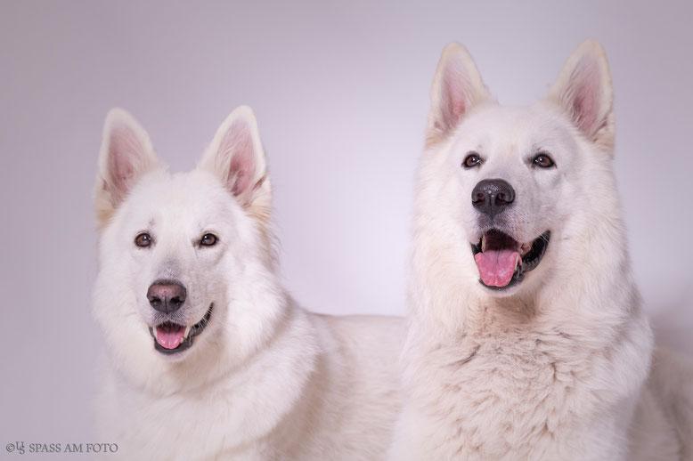 Yuma und Dayo