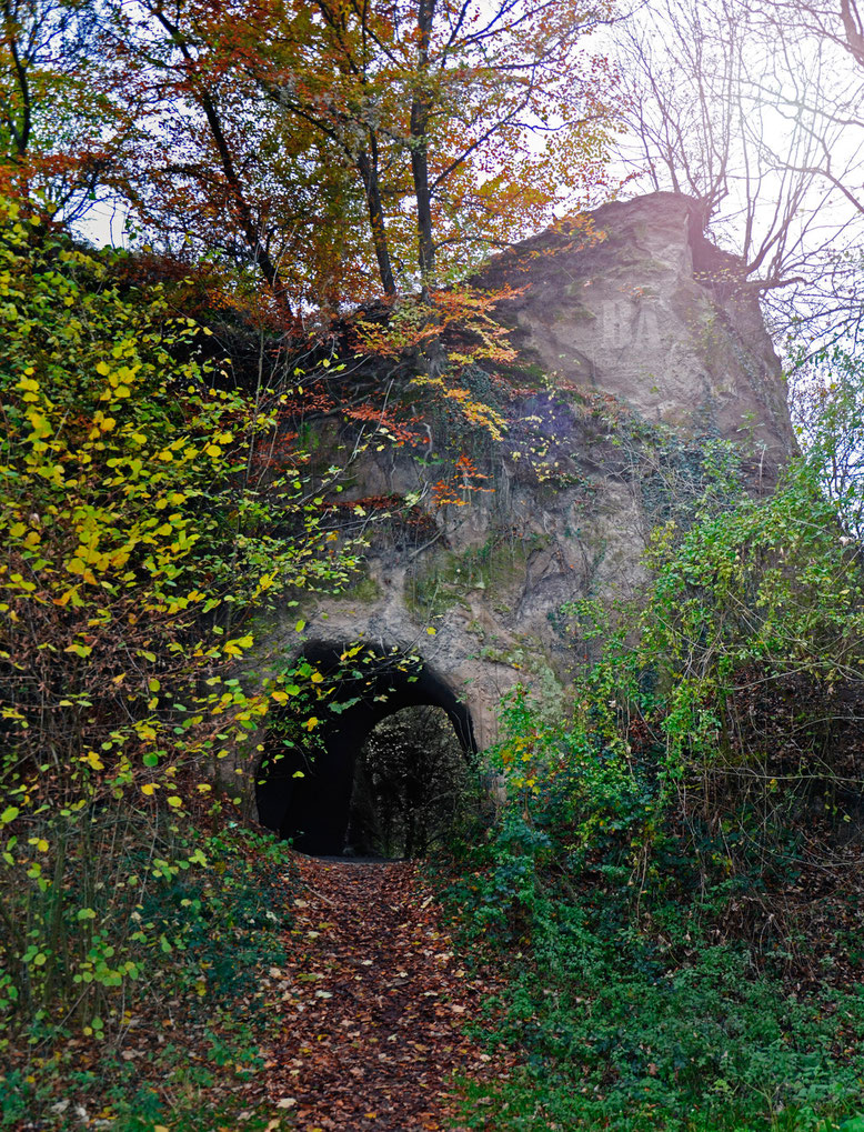 Höhlenlandschaften im Brohltal