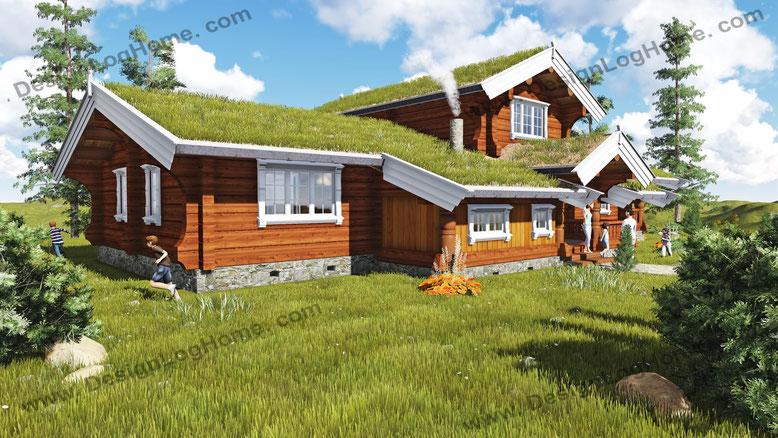 Норвежский дом Вид 2.