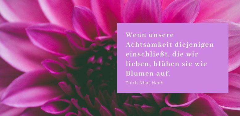 """Gastbeitrag zu Achtsamkeit von Melanie Engl """"Lieber glücklich von A bis Z"""". Lebensberatung Glückscoaching Berlin #achtsamkeit #lieberglücklich #glück #glücksmomente"""