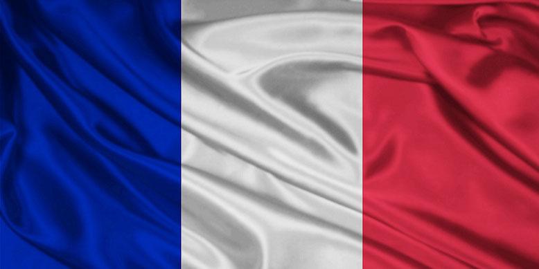 Auf Frankreichs Staatschef Emmanuel Macron sollte am Nationalfeiertag ein Mordanschlag verübt werden.