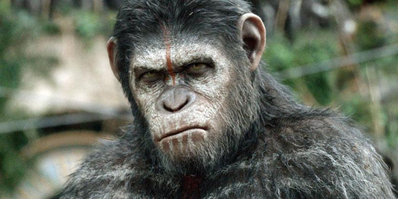 Die Affen sind los. Videospiel zu Planet der Affen 3 angekündigt. Bilderquelle: 20th Century Fox