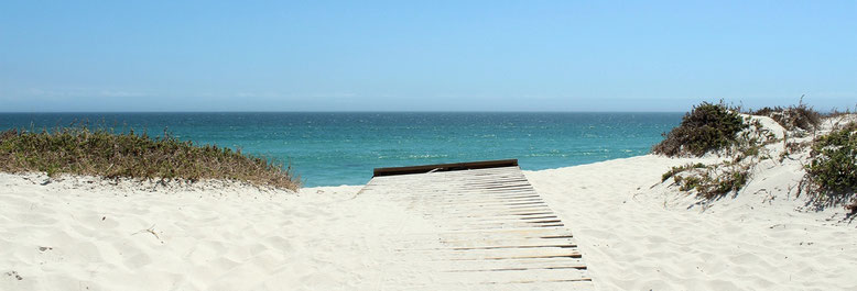 las playas des Las Landas cercanas al Castillo Bella Epoca 40