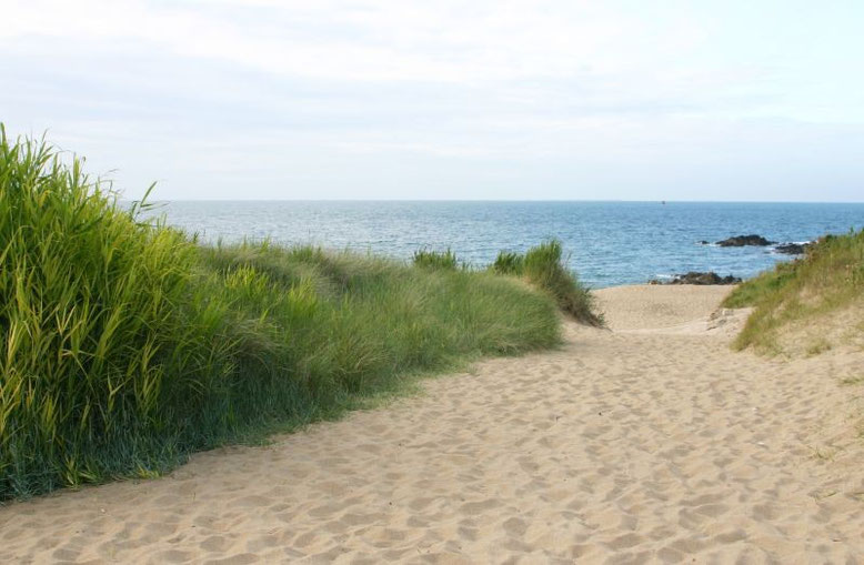 Saussaye Beach