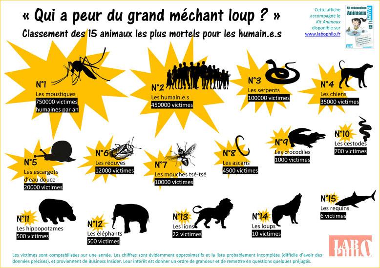 Quels sont les animaux les plus mortels pour les humain.e.s? Un affiche gratuite pour réfléchir. Classement des 15 animaux les plus mortels pour les hommes et les femmes, humains inclus!