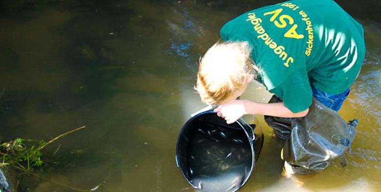Aktiver Artenschutz durch unsere Jugend - Fischbesatz in den Fließgewässern