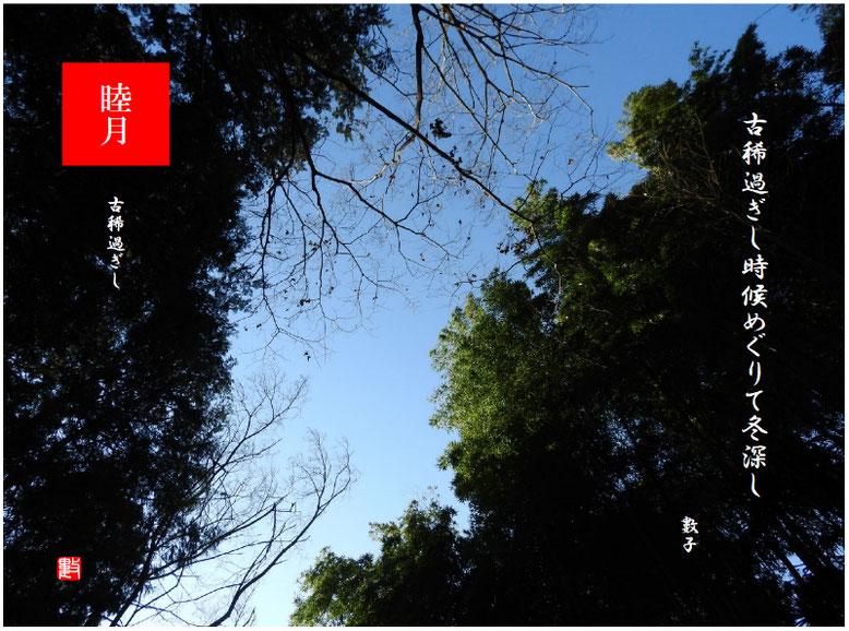 古稀過ぎし 2020/01/25制作 1月の親水緑道の空