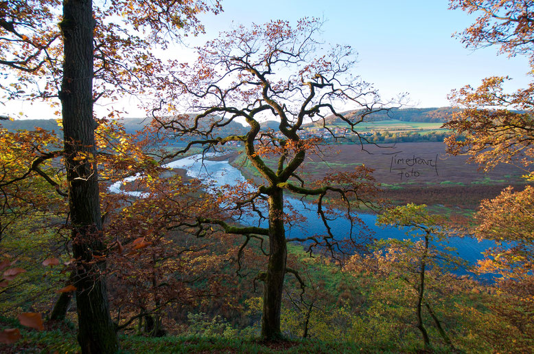 Weitwinkelaufnahme Herbst. Foto: E. Knipschild