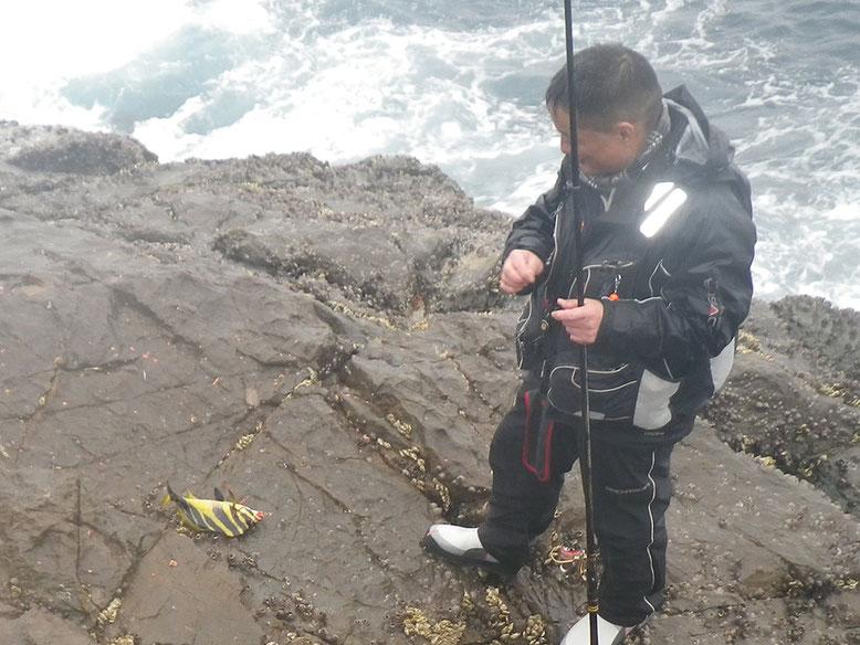 つるりんの大好きな魚ゲット!!