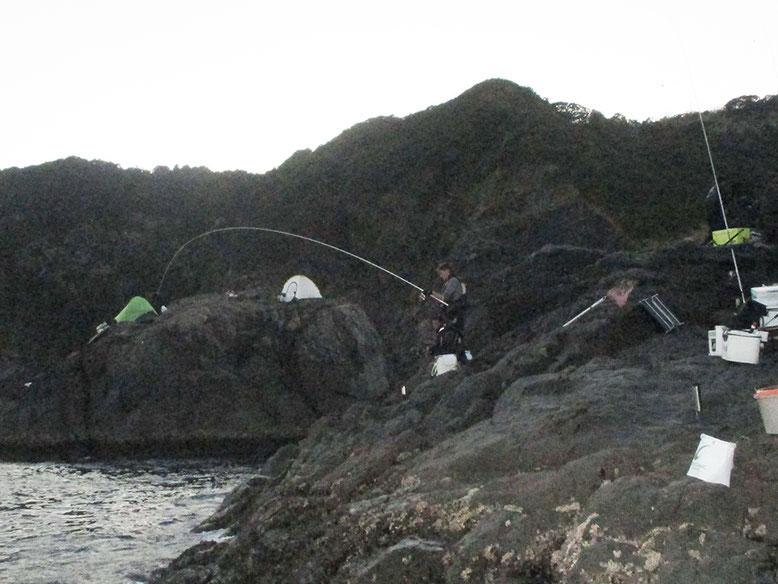 クロは釣れるようですが、なにせ小さい(^_^;)