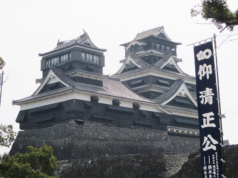 テレビで見たけど、とりあえず熊本城