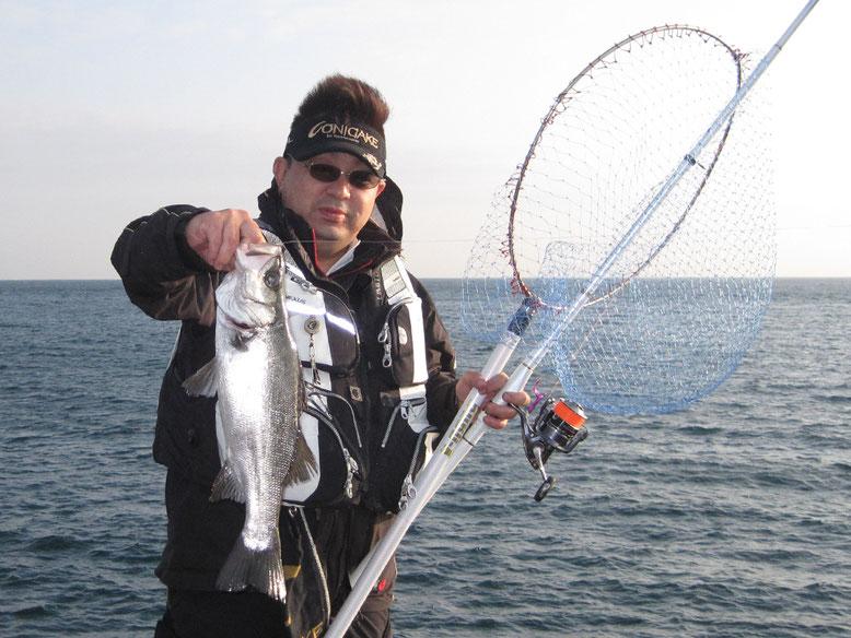 夜釣れたゼンゴやタカベで泳がせです。ヒラなら釣れます(^o^)
