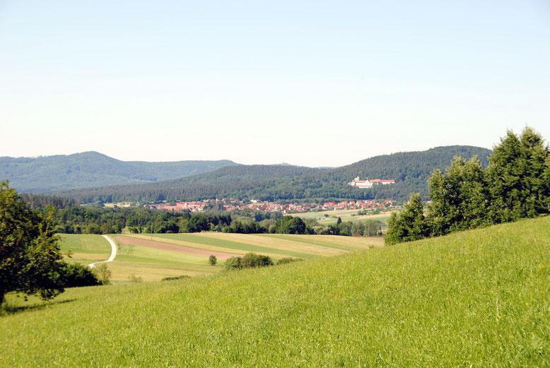 Das Bild der Kurklinik inmitten sanfter Waldberge steht beispielhaft für die wenigen bereits vorhandenen Therapieangebote in der erholsamen Naturlandschaft der östlichen Frankenalb.