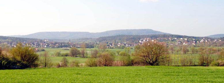 Blick nach Henfenfeld und zum Hammerbachtal. Im Hintergrund: der Nonnenberg