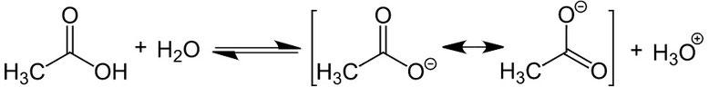 Strukturformel der Lösung von Carbonsäuren in Wasser.