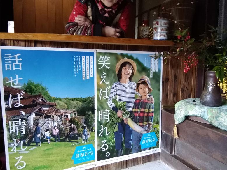 千屋アウトドアハウスのカウンターに、農家民宿ポスター2種類貼りました!
