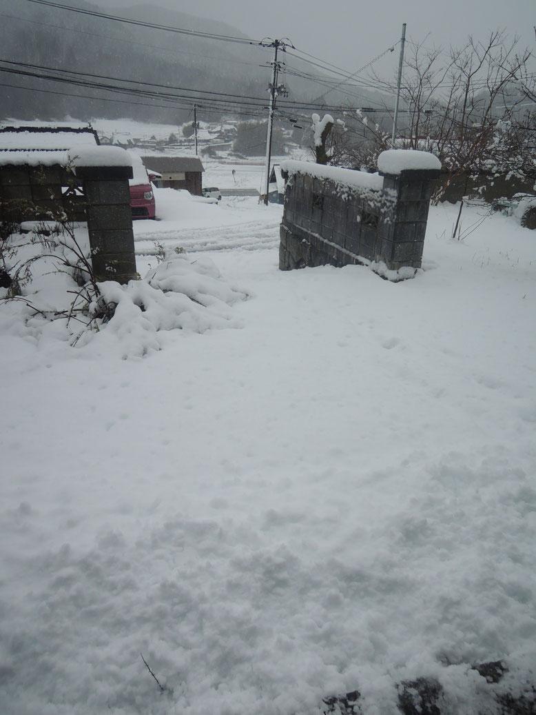 2020年4月13日。古民家民宿千屋アウトドアハウス前は、驚きの積雪15センチ!