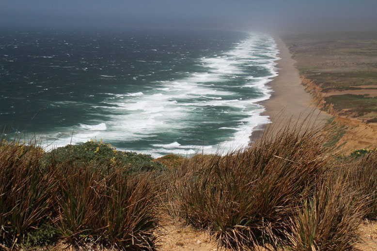 Point Reyes Beach