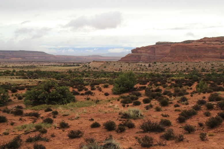 SR 313, Dead Horse Point State Park