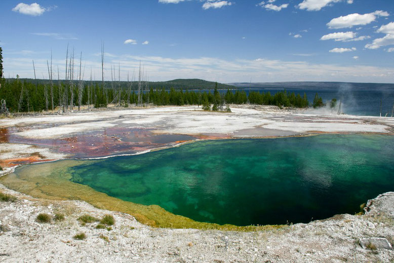 West Thumb Geyser Basin, Yellowstone NP