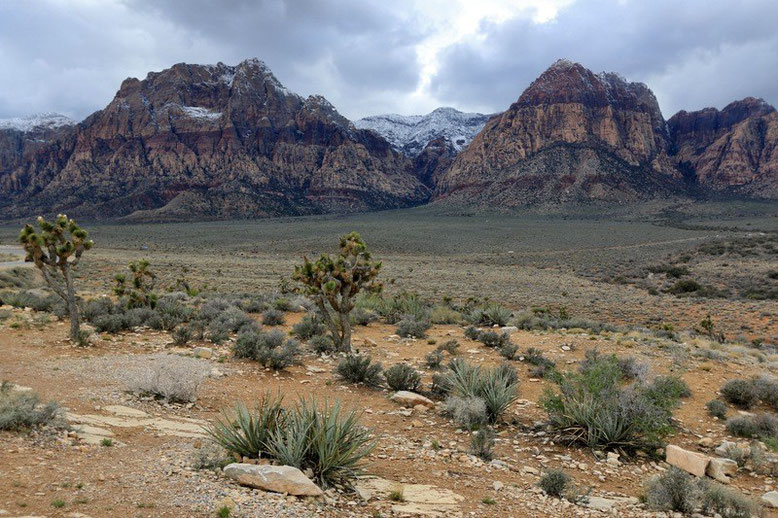 Red Rock Canyon National Conservation Area bei Las Vegas