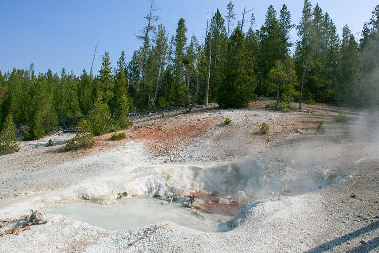 Yellowstone, Norris Geyser Basin