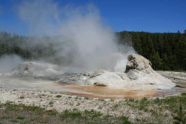 Yellowstone NP, Upper Geyser Basin