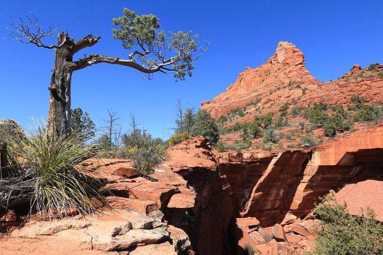 Blick auf Devil's Kitchen Sinkhole und die Sphinx Rock Formation.