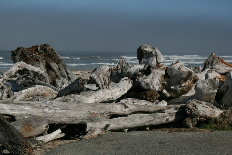 Orgon Coast, Bullards Beach State Park