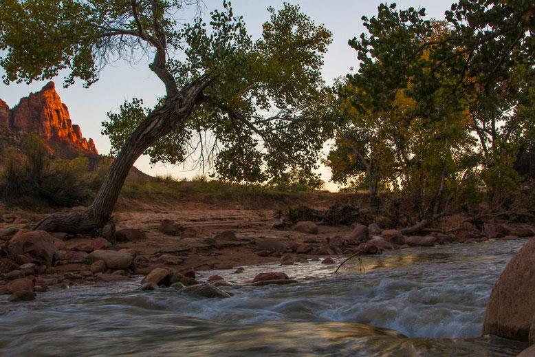 Zion NP -Pa'rus Trail
