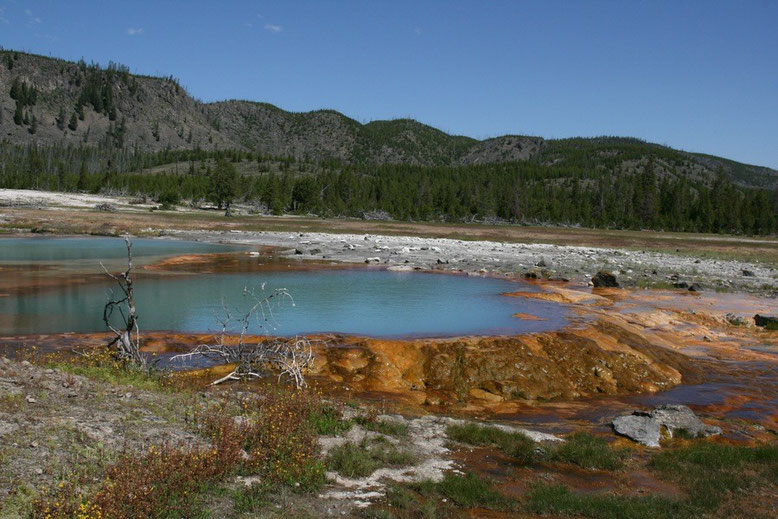 Yellowstone NP, Biscuit Basin